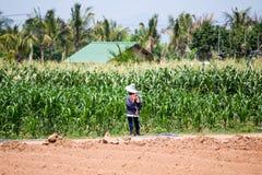 L'agricoltore tailandese sta stando nel campo di mais Immagini Stock
