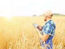L'agricoltore in una camicia di plaid ha controllato il suo campo ed il lavoro a tabl Fotografia Stock Libera da Diritti