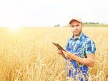 L'agricoltore in una camicia di plaid ha controllato il suo campo ed il lavoro a tabl Fotografie Stock