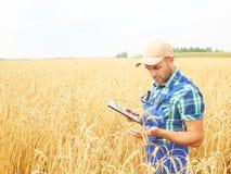L'agricoltore in una camicia di plaid ha controllato il suo campo ed il lavoro a tabl Fotografia Stock