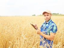 L'agricoltore in una camicia di plaid ha controllato il suo campo ed il lavoro a tabl Immagine Stock