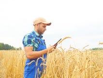 L'agricoltore in una camicia di plaid ha controllato il suo campo ed il lavoro a tabl Immagini Stock Libere da Diritti