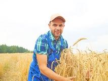 L'agricoltore in una camicia di plaid ha controllato il suo campo Mostra il grano h Immagine Stock