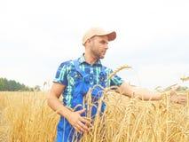 L'agricoltore in una camicia di plaid ha controllato il suo campo Mostra il grano h Fotografie Stock Libere da Diritti