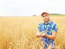 L'agricoltore in una camicia di plaid ha controllato il suo campo Mostra il grano h Fotografia Stock