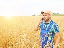 L'agricoltore in una camicia di plaid ha controllato il suo campo Parlando sul pho Immagini Stock Libere da Diritti