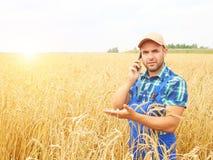 L'agricoltore in una camicia di plaid ha controllato il suo campo Parlando sul pho Immagine Stock Libera da Diritti