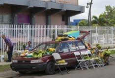 L'agricoltore vende la frutta dalla sua automobile Immagine Stock Libera da Diritti