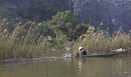 L'agricoltore vietnamita lavora al giacimento del riso Immagini Stock