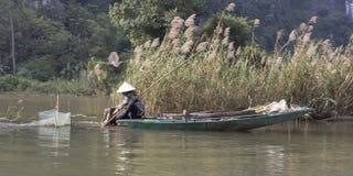 L'agricoltore vietnamita lavora al giacimento del riso alla mattina nebbiosa Immagini Stock