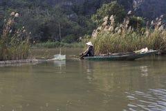 L'agricoltore vietnamita lavora al giacimento del riso alla mattina nebbiosa Fotografia Stock
