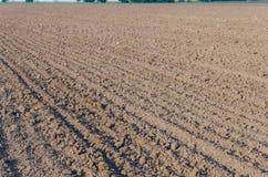 L'agricoltura ha arato il campo in primavera Fotografia Stock