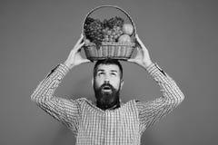 L'agriculteur avec le visage concentré présente des pommes, des raisins et des canneberges photo libre de droits