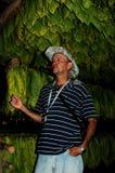 L'agriculteur cubain montrant son tabacco laisse le driyng dans une hutte dans Vinal photos stock