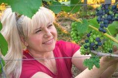 L'agriculteur heureux rassemble la récolte de raisin Image stock