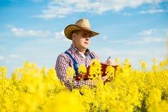 L'agriculteur inspecte la graine de colza images stock