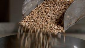 L'agriculteur rectifie la farine et fait le pain cuire au four dans un four russe clips vidéos