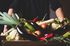 L'agriculteur se tenant dans le sien remet la boîte en bois avec les légumes locaux Photo modifiée la tonalité Image libre de droits