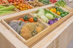 l'agriculture a moissonné des produits sur la boîte en bois Photographie stock libre de droits