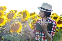L'agronomo della donna con un cappello utilizza una compressa per registrare le stime di Immagini Stock