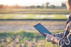 L'agronomo Using una compressa per ha letto un rapporto sul campo dell'agricoltura Fotografie Stock