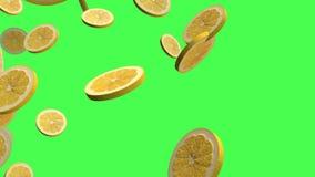 L'agrume jaune 3D de citron, remorquent les transitions visuelles d'isolement sur un écran vert, la longueur 4K illustration stock