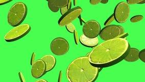 L'agrume vert 3D de citron, remorquent les transitions visuelles d'isolement sur un écran vert, la longueur 4K illustration libre de droits
