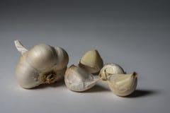 L'ail d'espèces d'allium est employé couramment pour sa saveur piquante Images libres de droits