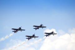 L'airshow de taureaux de vol Photographie stock libre de droits