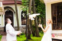 L'ajouter de mariage au mariage joue, des lapins, lapins Photos libres de droits