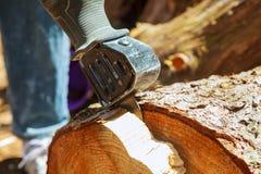 L'ajustement électrique de lame de scies de gabarit, se ferment  Images libres de droits