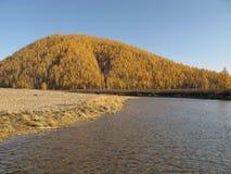 L'Alaska Immagini Stock Libere da Diritti