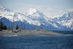 l'Alaska Photographie stock libre de droits