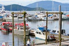 L'Alaska - barche nel porticciolo del porto della baia di Auke Immagine Stock Libera da Diritti