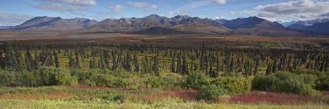 l'Alaska Glennhighway en automne photographie stock