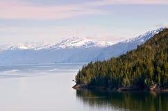 L'Alaska Mountainrange Fotografia Stock