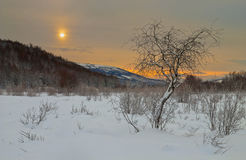L'alba. Immagine Stock