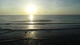 L'alba alla spiaggia di pietra nera II video d archivio