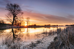 L'alba con variopinto si rannuvola uno stagno selvaggio circondato dagli alberi nella mattina di autunno Fotografia Stock Libera da Diritti
