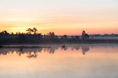 L'alba di mattina sopra il lago con l'albero della siluetta riflette sull'acqua Immagini Stock Libere da Diritti