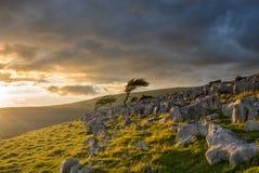 L'alba lunatica sul Yorkshire attracca Fotografia Stock