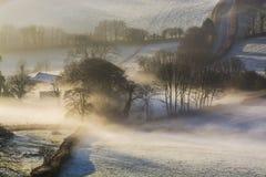 L'alba nebbiosa sopra il Devonshire sistema con gli alberi in vista, Brentor, Devon, Regno Unito Fotografia Stock Libera da Diritti
