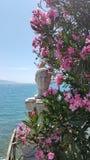 L'Albania contenuta foto Immagine Stock