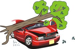 L'albero è caduto sull'automobile Immagini Stock