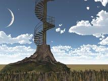 L'albero è scale circolari Immagine Stock Libera da Diritti