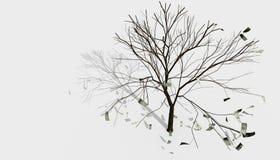 L'albero 01 dei soldi Fotografie Stock Libere da Diritti