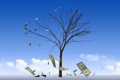 L'albero 02 dei soldi Immagine Stock