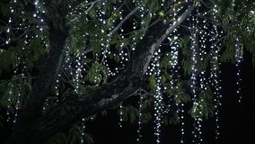 L'albero appeso con le ghirlande d'attaccatura Tema di natale Ghirlande bianche archivi video