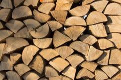 L'albero asciutto e incrinato, aspetta per legna da ardere nell'inverno Immagine Stock Libera da Diritti