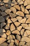 L'albero asciutto e incrinato, aspetta per legna da ardere nell'inverno Fotografia Stock Libera da Diritti
